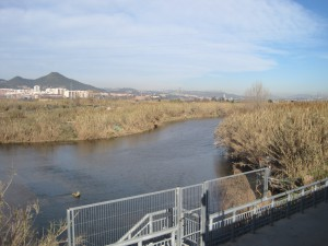 Llobregat river in the catchment of the drinking water treatment plant in Sant Joan Despi
