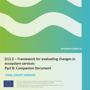 DESSIN Cookbook Companion Document (D11.2b)