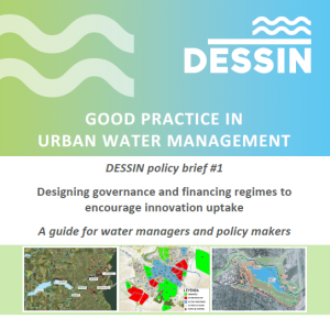 DESSIN Policy Brief 1 Designing governance and financing regimes to encourage innovation uptake (D12.3)