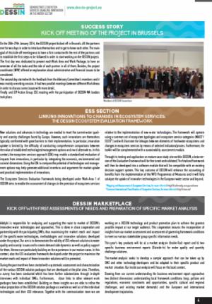 DESSIN Newsletter Issue 1